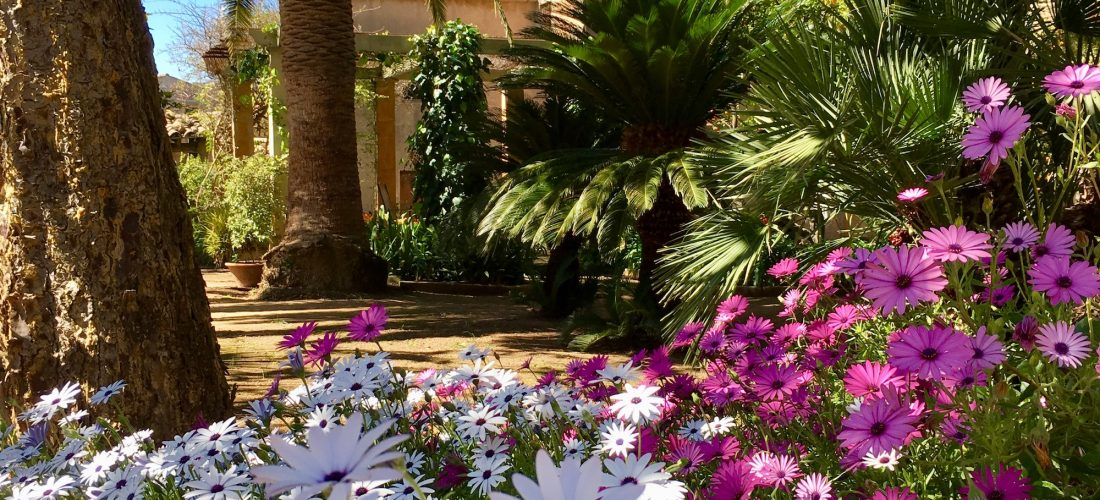 Blühender Garten der Finca Raims
