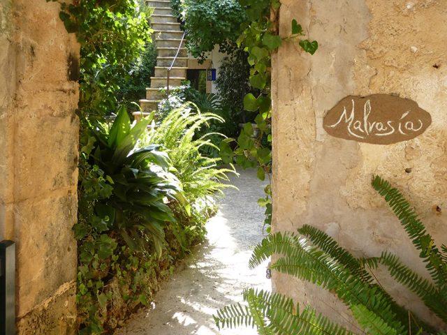 Malvasia Eingang