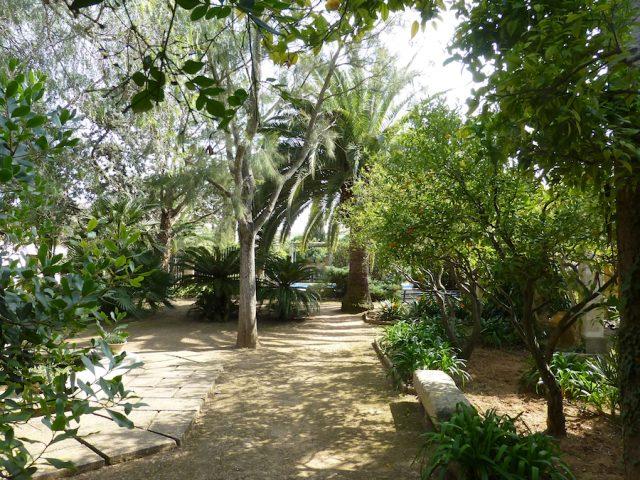 Malvasia - vista al jardin