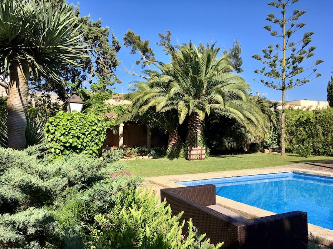 The garden with pool