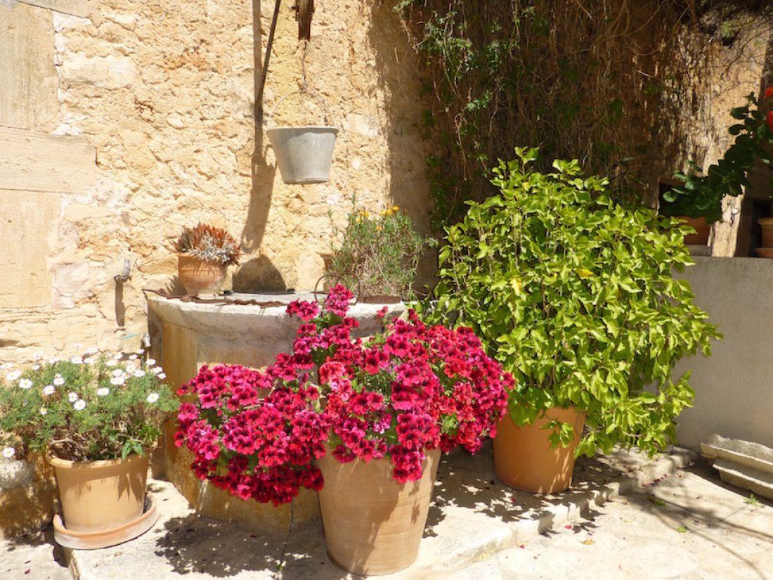 Brunnen im Innenhof der Finca Raims