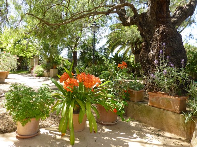 Moscatell - Vista al jardin